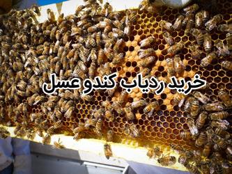 خرید ردیاب کندو عسل